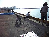 柏崎港で堤防釣り