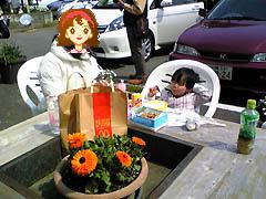 花見をしながら昼食