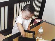 甲羅で昼食3