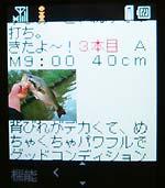 keitai_img.jpg
