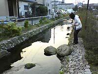 kinjjo_kawa.jpg