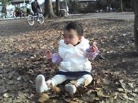 公園で遊ぶ。