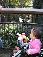 zoo1023.jpg
